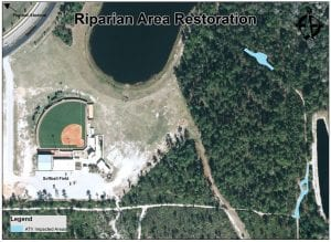 Riparian Area Restoration